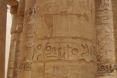 专栏象形文字卡纳克神庙寺庙 免版税库存图片