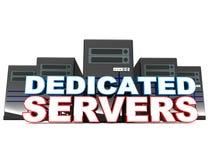 专用服务器 向量例证