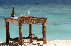 专用海滩的野餐 免版税库存图片