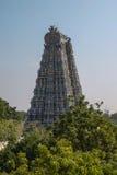 专用的印度马杜赖阁下meenakshi nadu孪生的其他一个sundareswarar泰米尔人寺庙 库存照片