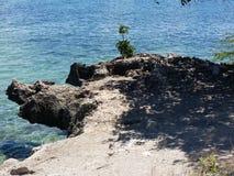 专用的海滩 库存图片