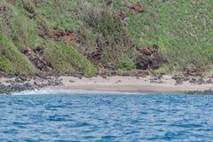 专用的海滩 免版税图库摄影