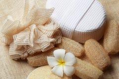 专辑洗刷在为健康皮肤设置的温泉的肥皂 免版税图库摄影