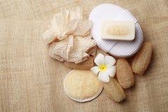 专辑洗刷在为健康皮肤设置的温泉的肥皂 免版税库存图片