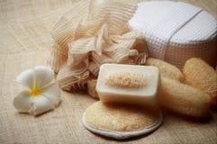 专辑洗刷在为健康皮肤设置的温泉的肥皂 免版税库存照片