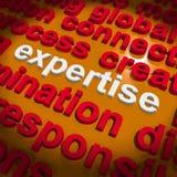 专门技术词云彩显示技能熟练和能力 免版税库存照片