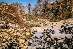 世田谷区公园维也纳 免版税库存图片