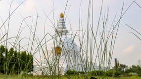 世界和平塔在蓝毗尼,尼泊尔 免版税库存照片