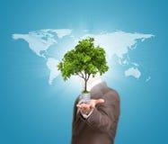 世界地图和人拿着与树的电灯泡 免版税库存照片