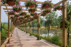 世界庭院的花走廊在巴南,重庆 免版税库存照片