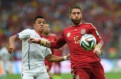 世界杯2014年 免版税图库摄影