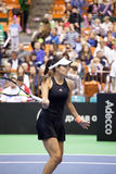 世界没有6网球员安娜・伊万诺维奇 免版税库存照片
