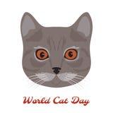 世界猫天 猫顶头特写镜头 免版税库存照片