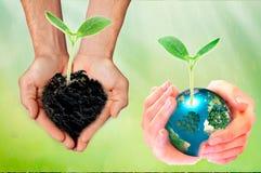 世界环境日概念:举行地球树的地球和心形在被弄脏的自然背景的两只人的手 免版税库存图片