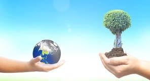 世界环境日概念:拿着被污染的地球和绿色树在蓝色自然背景 免版税图库摄影