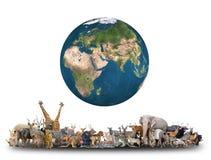 世界的动物与行星地球的 免版税库存照片