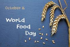 世界粮食日、10月16日,黑板用谷物和文本 免版税库存照片
