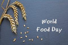 世界粮食日、10月16日,黑板用谷物和文本 库存图片