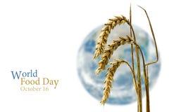 世界粮食日,黑麦10月16日,在一颗被弄脏的世界水珠前面的 免版税库存图片