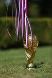 世界足联杯子战利品 免版税图库摄影
