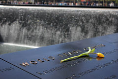 世界贸易中心纪念品的黄色罗斯 库存照片