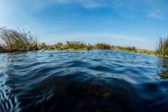 水世界 库存照片
