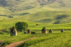 16世纪古老历史陵墓复合体  Shemakhy市,阿塞拜疆区  免版税图库摄影