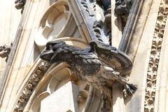 14世纪圣Vitus大教堂,面貌古怪的人,石鸟,布拉格,捷克 库存照片