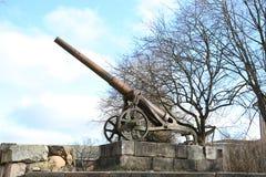 19世纪大炮在陶格夫匹尔斯堡垒 免版税图库摄影
