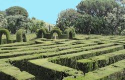 16世纪欧洲迷宫 库存照片