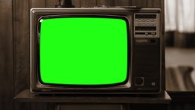 20世纪80年代电视绿色屏幕 乌贼属口气 徒升 股票录像