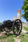 13世纪Checiny城堡,中世纪堡垒, Checiny,波兰废墟  免版税图库摄影