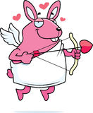 丘比特兔子 免版税库存照片