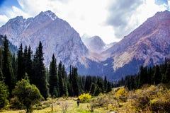 丙氨酸Kol地区柯尔克孜自然 库存照片