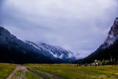 丙氨酸Kol湖区域-柯尔克孜自然 免版税图库摄影