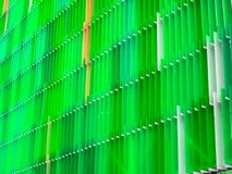 丙烯酸酯的塑料板料内部五级和颜色苔绿色y 库存照片