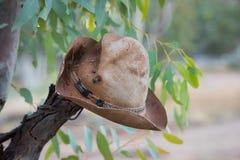 丛林居民的帽子 库存图片