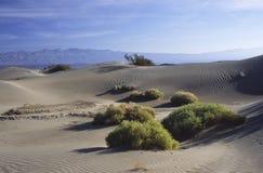 丛生死亡沙漠谷 免版税库存图片