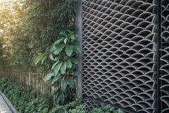 东亚瓦片墙壁的样式波浪样式 库存图片