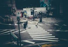 东京交通 免版税库存照片