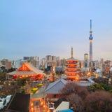 东京地平线看法在微明的 库存照片