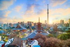 东京地平线看法在微明的 图库摄影
