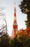 东京塔在秋天 免版税图库摄影