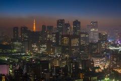 东京夜场面,全景 免版税库存图片