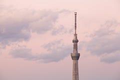 东京天空结构树 库存照片