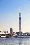 东京天空结构树 库存图片