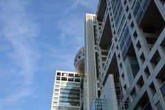 从东京市的鸟瞰图 日本 免版税库存照片