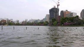 东京市街市全景,上野公园的湖 股票录像