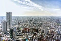 东京市,日本阿里埃勒视图  免版税库存照片