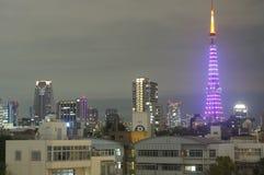东京铁塔,日本夜视图  库存照片